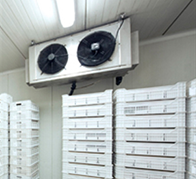cold_room_humidification